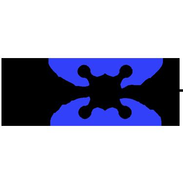 Drone Life Logo